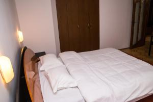 Aviatorilor Business Flat, Appartamenti  Floreasca - big - 4