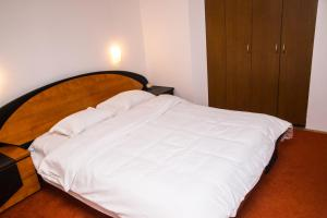 Aviatorilor Business Flat, Appartamenti  Floreasca - big - 10