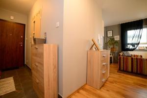 Comfy Dream Apartment