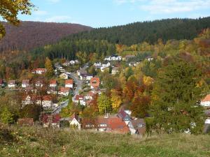 Pension Rheingold Garni, Penzióny  Bad Grund - big - 27