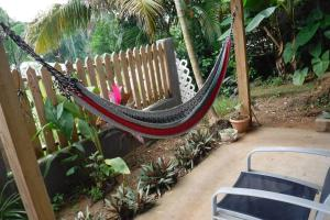 Roatan Backpackers' Hostel, Hostelek  Sandy Bay - big - 66