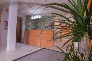 Hotel Isla Menor, Hotely  Dos Hermanas - big - 36