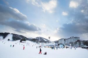 obrázek - Yongpyong Resort