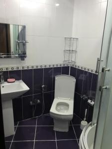 All Season Apartment, Ferienwohnungen  Baku - big - 3