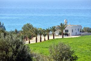 Villa 339, Vily  Argaka - big - 6