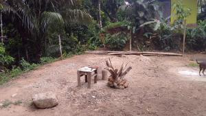 Casa do Bambu Amarelo, Проживание в семье  Парати - big - 4