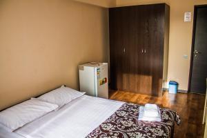 Отель Академик - фото 12