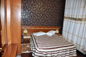 Pensiunea Alex, Guest houses  Sinaia - big - 5
