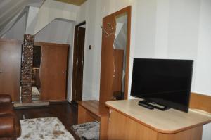 Pensiunea Alex, Guest houses  Sinaia - big - 11
