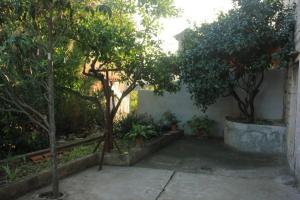 Apartment Vis 8435a