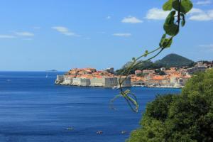 Studio Dubrovnik 9077a, Appartamenti  Dubrovnik - big - 3