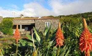 Casa do Bernardo