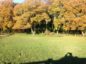 Dallington Lodge, Шале  Dallington - big - 19