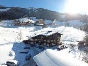 Ski in Ski out Hotel Unterellmau, Отели  Залбах - big - 1