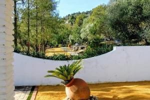 Casas Rurales Los Algarrobales, Üdülőközpontok  El Gastor - big - 55