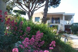 "obrázek - Studios ""Villa Coeur sur Mer"""