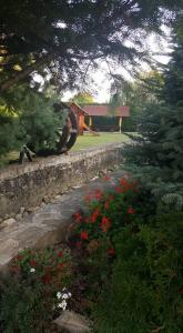 Pensiunea Madalina, Гостевые дома  Путна - big - 21