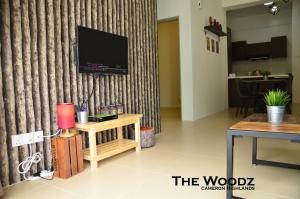 The Woodz x Trunk