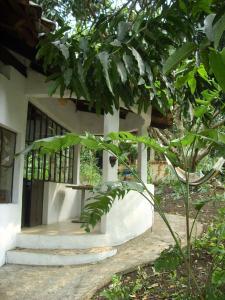 Aldea Ecoturismo, Hotels  Jalcomulco - big - 67