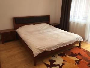 Izvorul Dorului 2, Апартаменты  Синая - big - 7