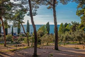 Campsite Porton Biondi Mobile Homes Mediteran, Ferienparks  Rovinj - big - 20