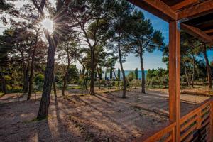 Campsite Porton Biondi Mobile Homes Mediteran, Ferienparks  Rovinj - big - 19