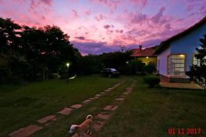 Canto da Lala Chales, Guest houses  Pouso Alto - big - 61