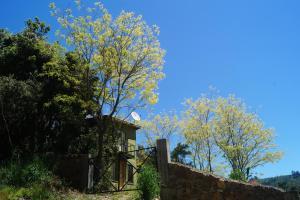 Cabaña Ribera de Buchupureo