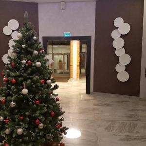 New Year App, Aparthotels  Sankt Petersburg - big - 3
