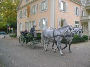 Du Russel Suite, Апартаменты  Баден-Баден - big - 82