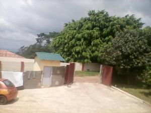 Abithes Guesthouse, Pensionen  Mampong - big - 19
