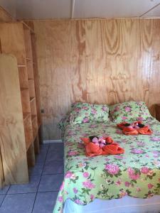 Cabanas Hinariru Nui, Chaty v prírode  Hanga Roa - big - 20