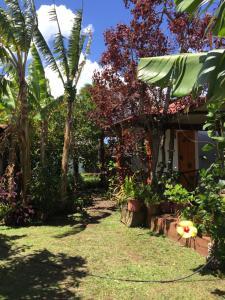 Cabanas Hinariru Nui, Chaty v prírode  Hanga Roa - big - 9