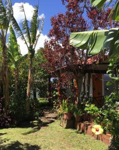 Cabanas Hinariru Nui, Chaty v prírode  Hanga Roa - big - 65