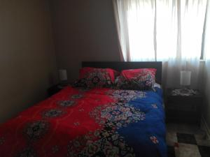Departamento en el centro de Osorno, Appartamenti  Osorno - big - 4