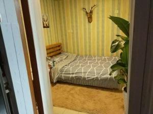 Sunshine Hostel, Hostely  Kanton - big - 30