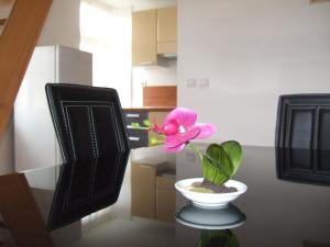 Apartments Vila Jurka, Apartments  Križevci pri Ljutomeru - big - 25