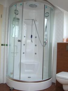 Apartments Vila Jurka, Apartments  Križevci pri Ljutomeru - big - 15