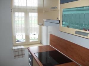 Apartments Vila Jurka, Apartments  Križevci pri Ljutomeru - big - 14
