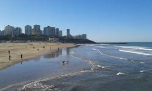 Hotel Catedral, Hotels  Mar del Plata - big - 16