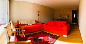 Sankt Moritz central apartment