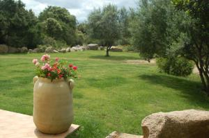 Villa Ginepri, Holiday homes  Arzachena - big - 11