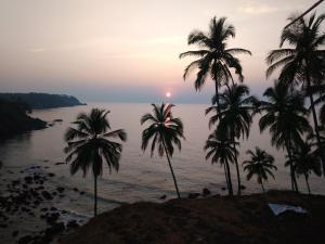 Cabo De Rama Cottage, Case vacanze  Cola - big - 18
