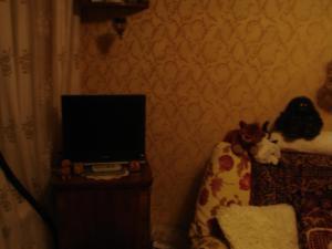 Apartment on Vvedenskogo 26/3, Ferienwohnungen  Moskau - big - 12