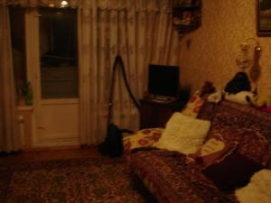 Apartment on Vvedenskogo 26/3, Ferienwohnungen  Moskau - big - 10