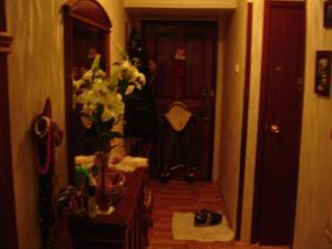 Apartment on Vvedenskogo 26/3, Ferienwohnungen  Moskau - big - 15