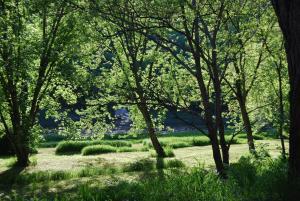The River House, Nyaralók  Cochecton - big - 1