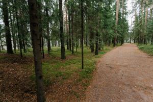 База отдыха Лесная Обитель - фото 24