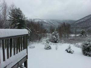 Hunter near Ski Slopes, Catskills Amazing Views!, Case vacanze  Hunter - big - 15
