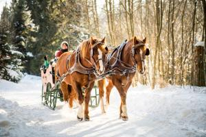 Hotel-Gasthof Pferdekoppel